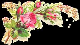Flower Bundle 2.png