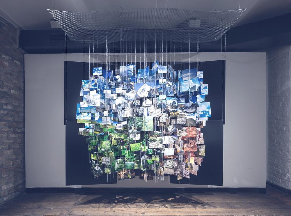 Ausstellungsansicht, Kunst Haus Wien, Natur
