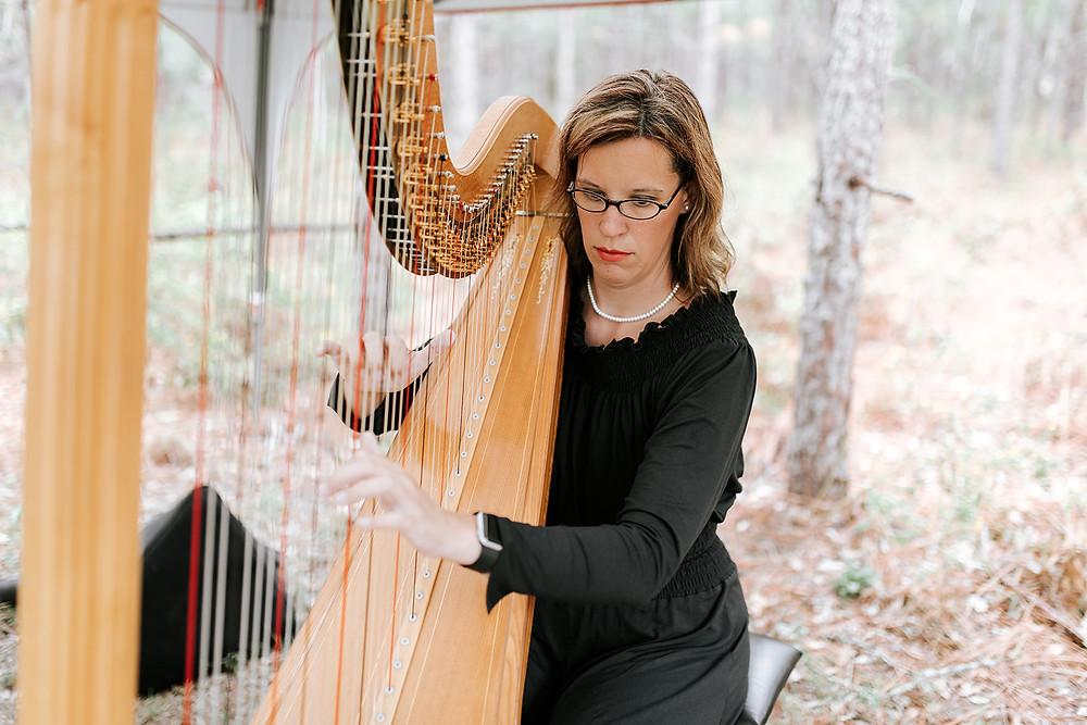 Ceremony Harpist (c) AshlynCatheyPhoto