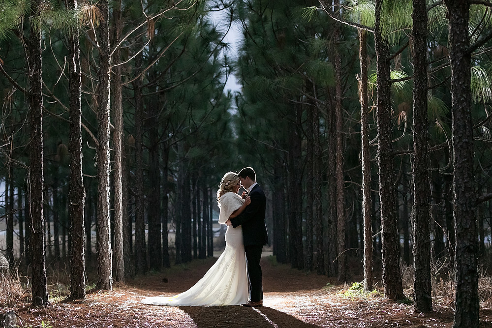 Bride and Groom in Pines