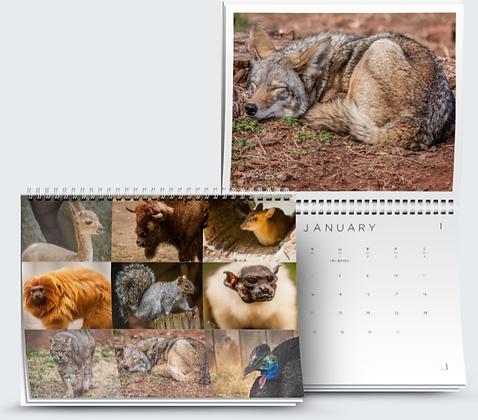 Assorted Animals set 2 Calendar