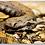 Thumbnail: Rattlesnake Keychain