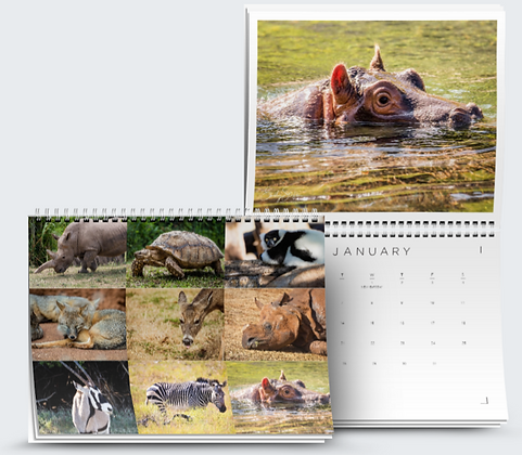 Assorted Animals Calendar