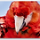 Thumbnail: Scarlet Macaw Keychain