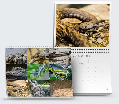Reptiles Calendar