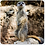 Thumbnail: Assorted Animals Coasters