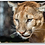 Thumbnail: Mountain Lion Keychain