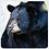 Thumbnail: Bear Coasters