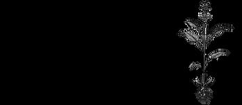 Ars Herbaria Logo dunkel.png