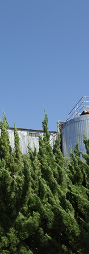 Soy sauce factory