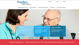 StoppSturz Website.png