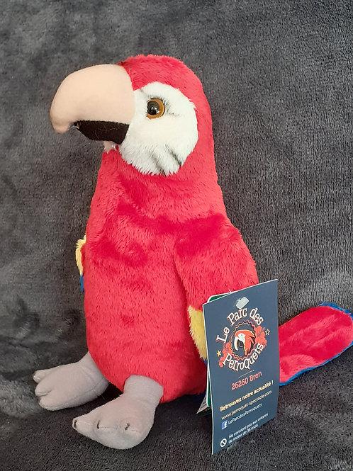 Peluche Perroquet Rouge