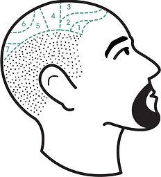 scalp tattoo cennik
