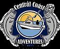 CCA logo 2010 PNG.png