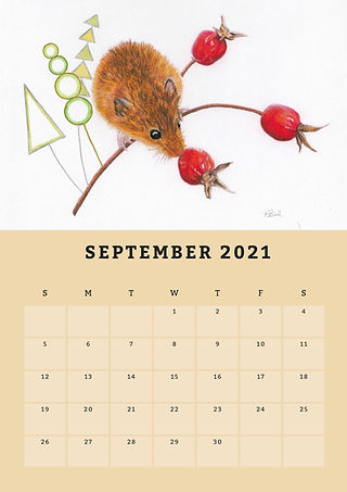 9 Sep 2021 copy.jpg