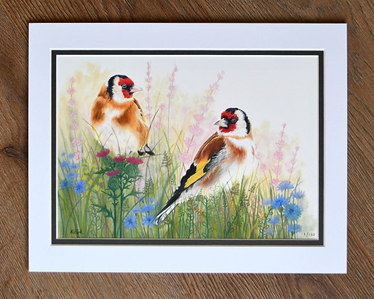 Feathered Friends Limited Edition Print