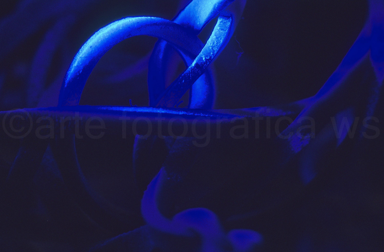 Etwas-verworren-in-Blau