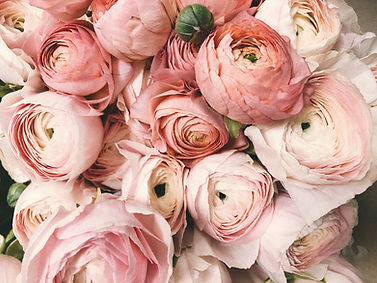 anniversary-beautiful-blooming-931177_ed