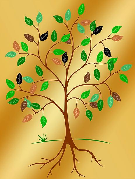 pixabay tree.png