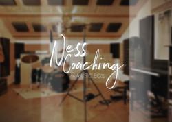 Ness Studio Logo