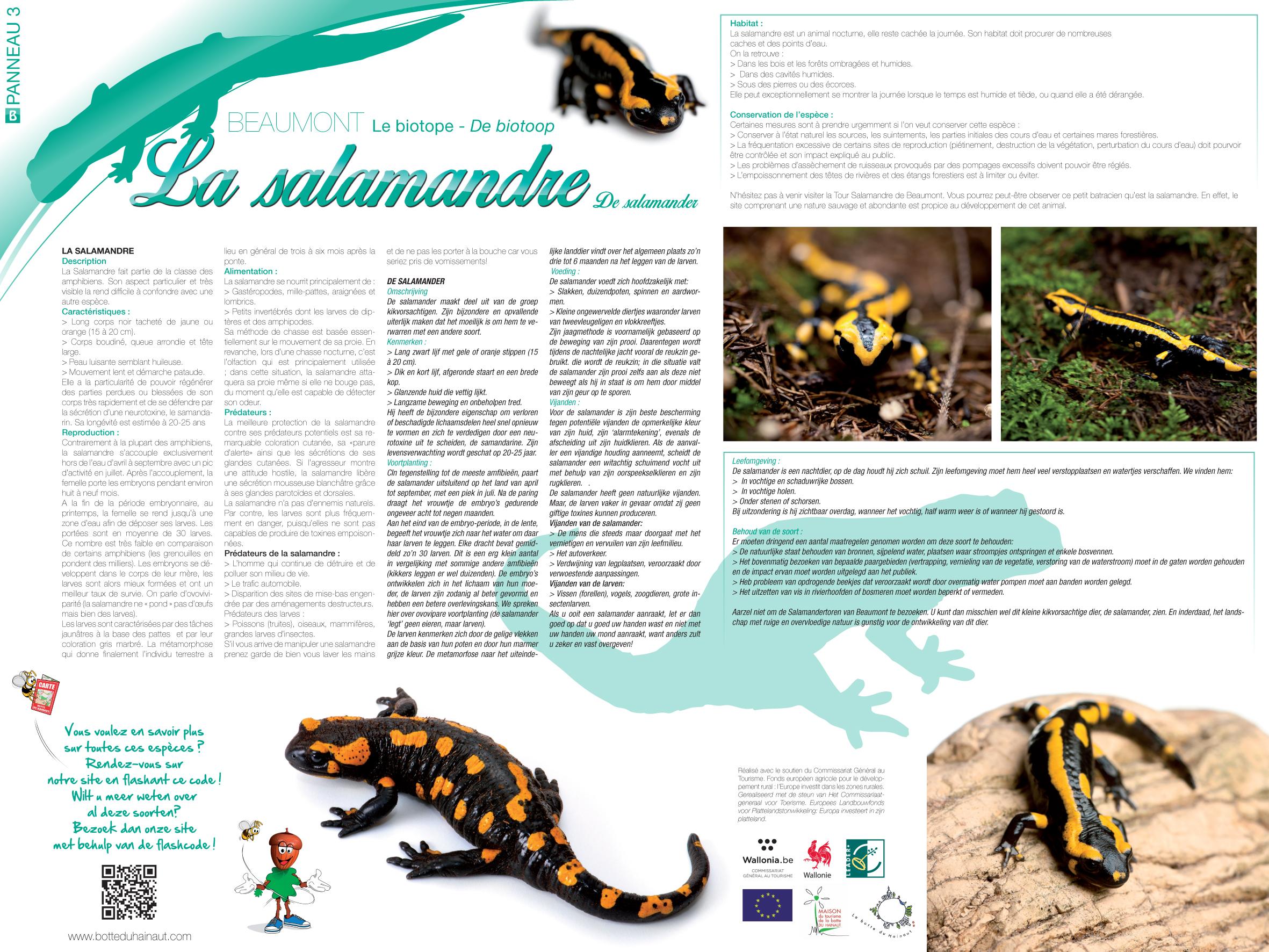 Beaumont_La salamandre