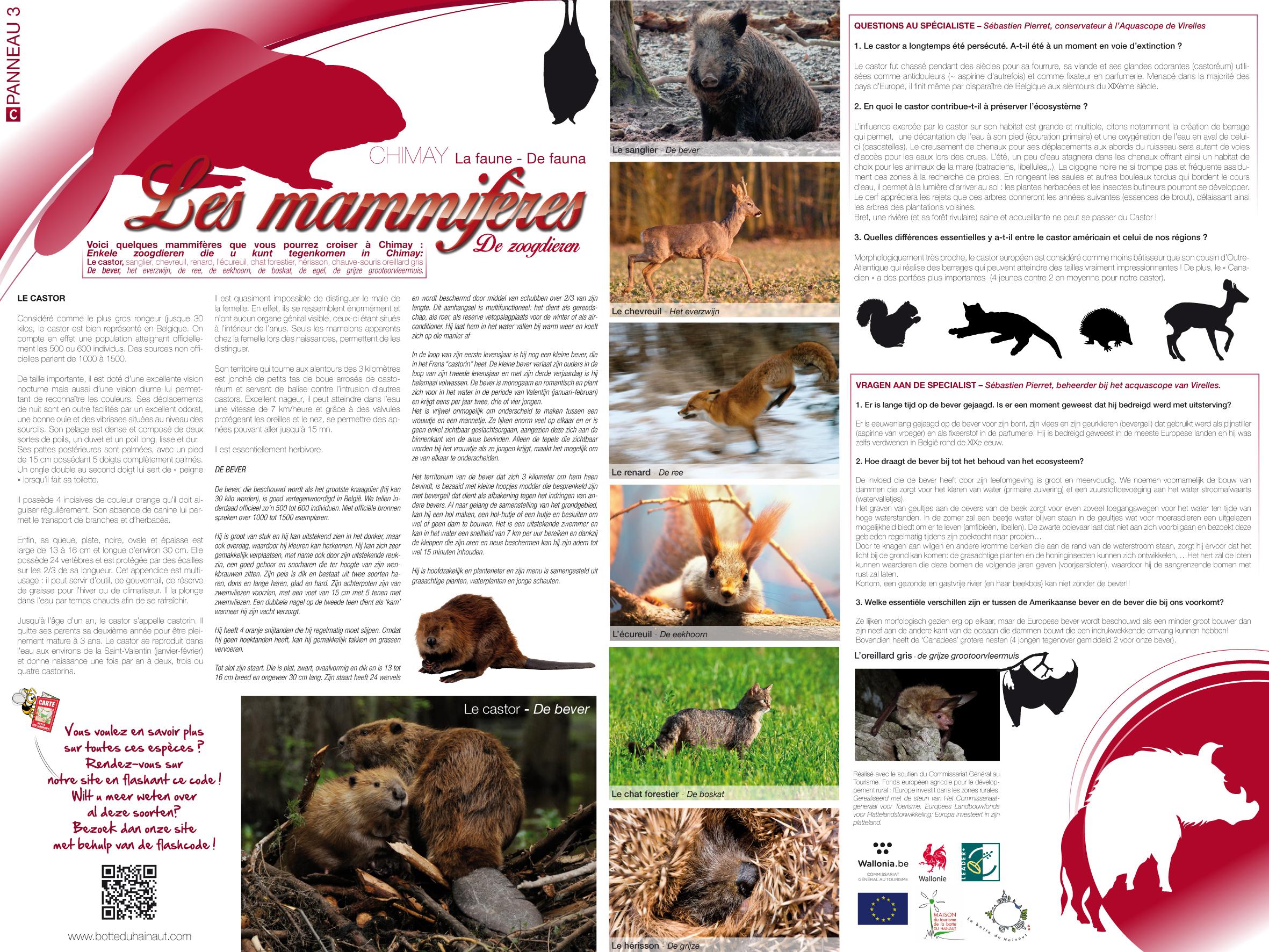 Chimay_La_faune_Les_mammifères