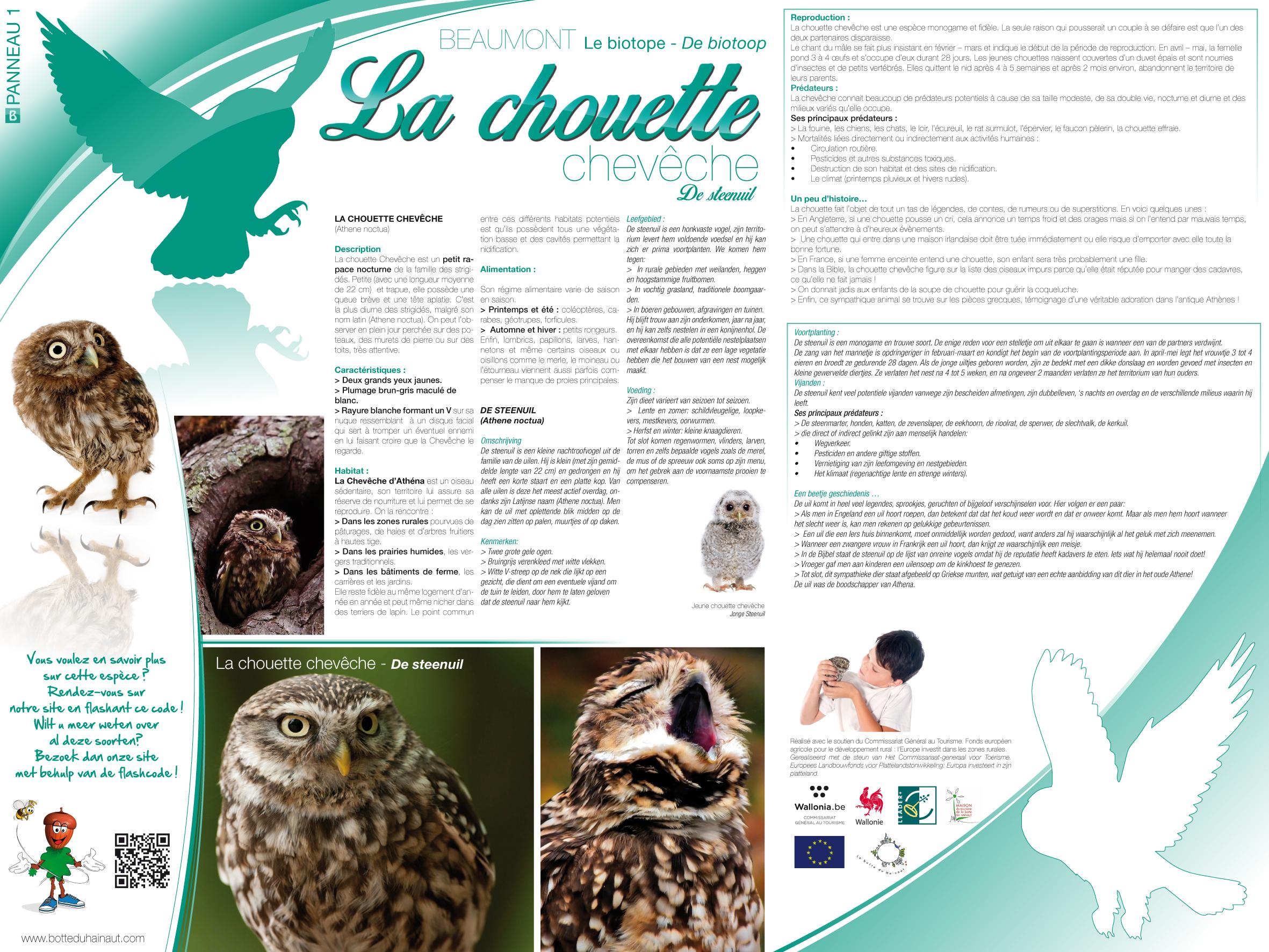 Beaumont_La chouette