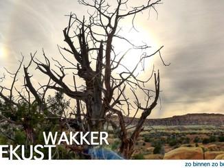 WAKKER GEKUST