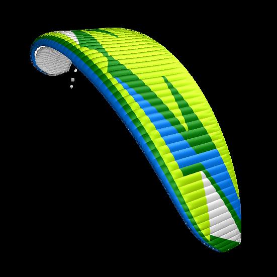 Hadron XX