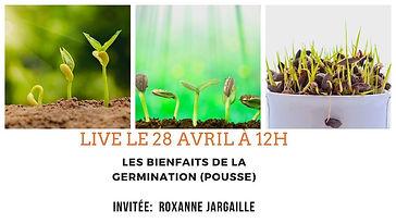 germination-pousses-alimentation-comment