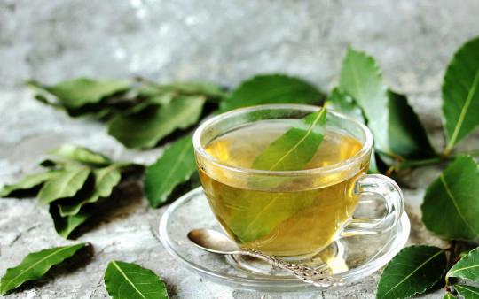 Les bienfaits thérapeutiques des feuilles de laurier
