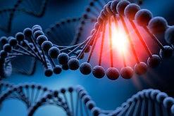 Conférence Activation de ses brins d'ADN