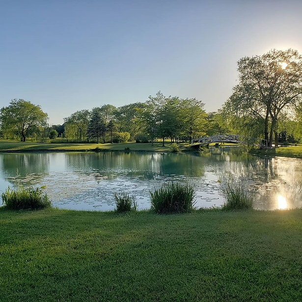natures pond.jpg
