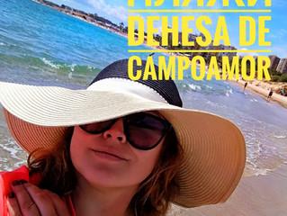 Пляжи Dehesa De Campoamor