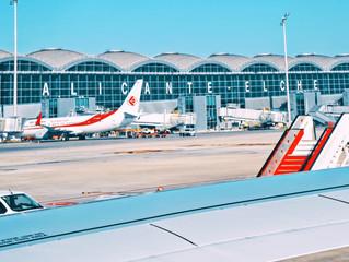 Как добраться из аэропорта Аликанте в Dehesa de Campoamor/Cabo roig/La Zenia/Torrevieja