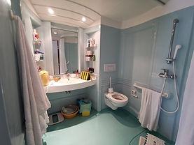 Salle de bain d'une chambre.jpg