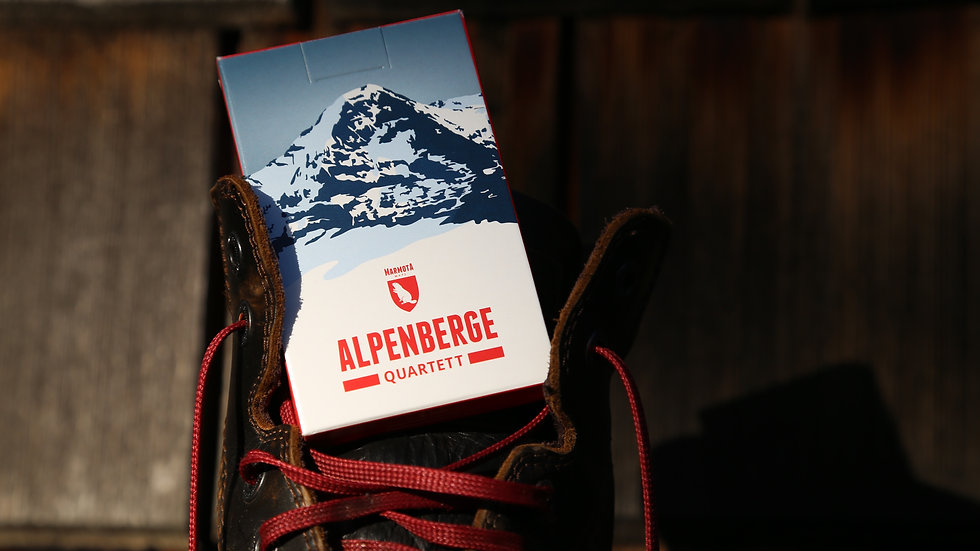 Alpenberge Quartett