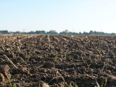 Soil; The Skin of Our Planet