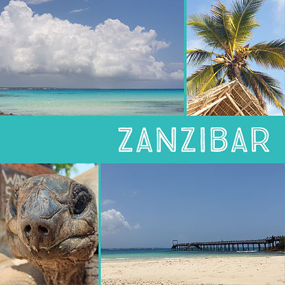 General Zanzibar.jpg