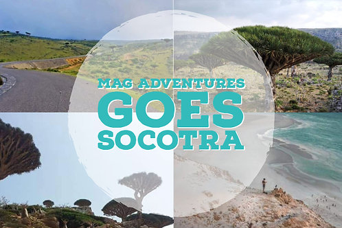 Socotra - Jewel of Arabia