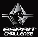 ESPRIT CHALLENGE noir & blanc-01.png