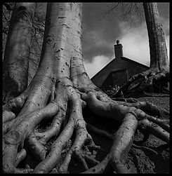 1 Graham Hunt B&W 6x6.jpg