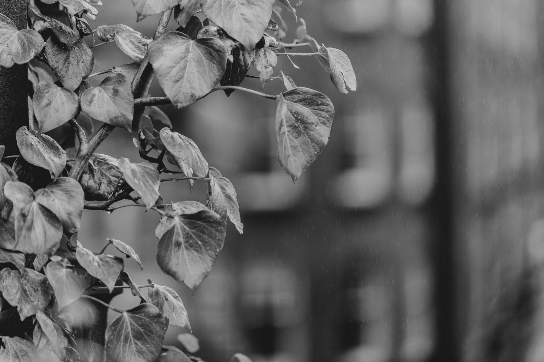 Graham Hunt photography-3