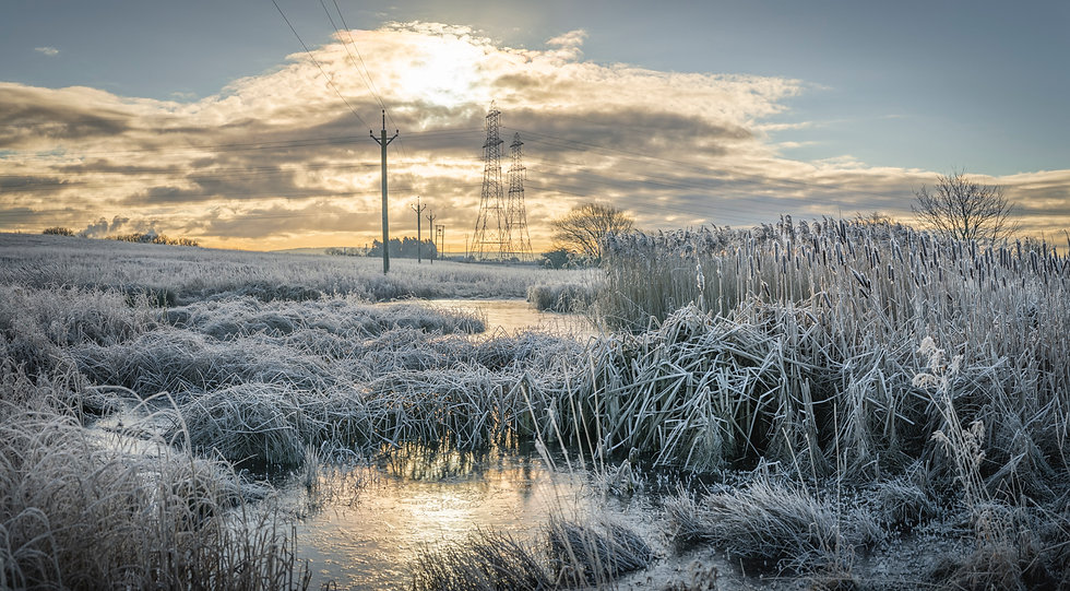 Greatham cool morning-2.jpg
