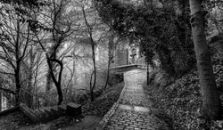 Graham Hunt photography-36