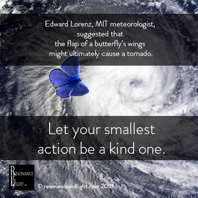 Can you use the Butterfly Effect to create a kinder world?
