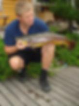 06a_fornøgdfiskar.JPG