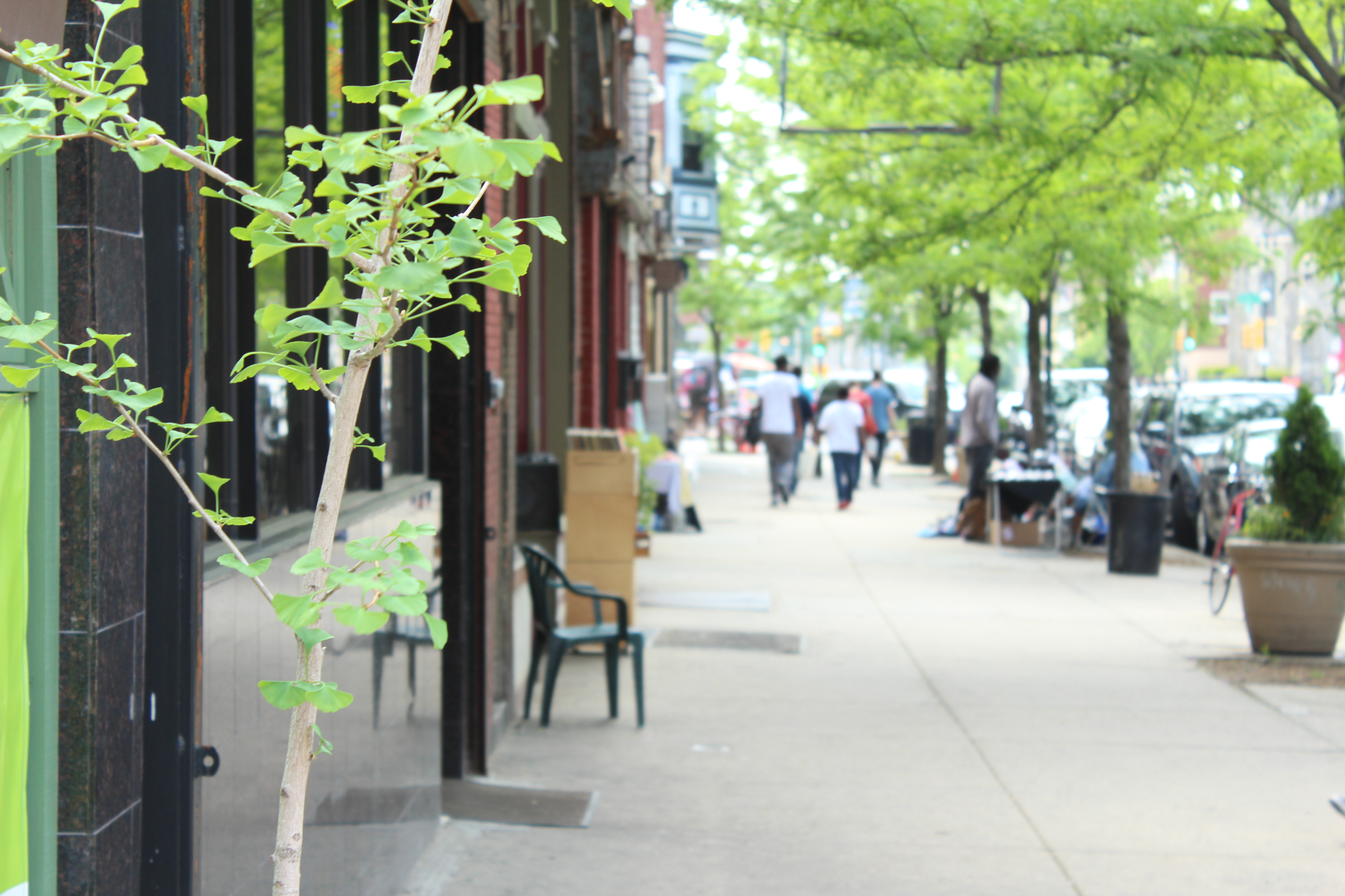 Baltimore Ave