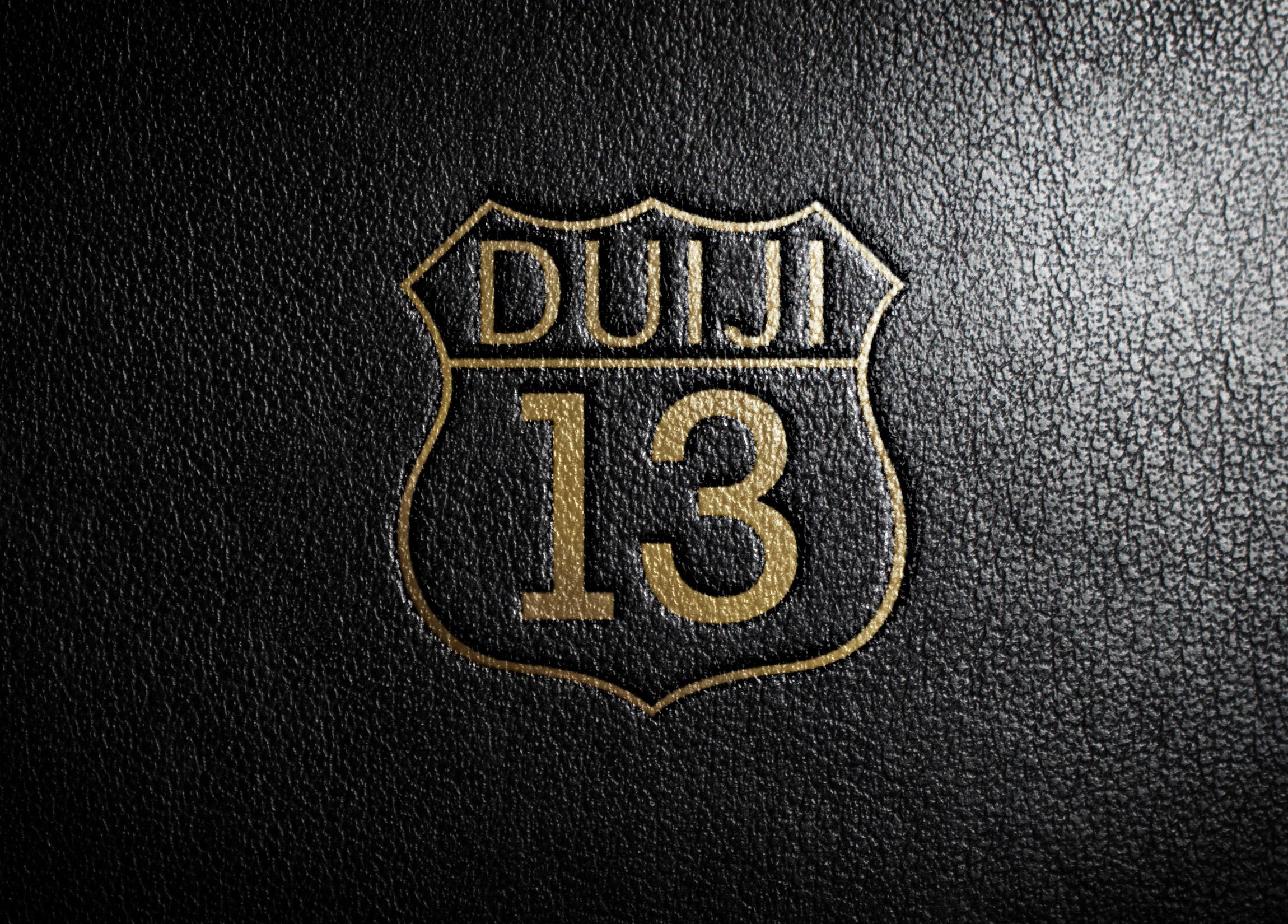 DUIJI 13_4