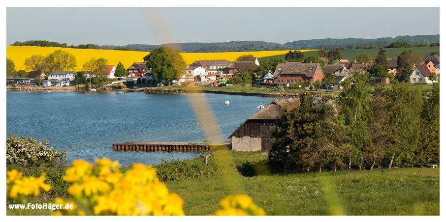 Mariendorf - Alt Reddevitz